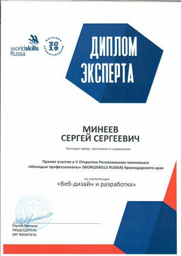 World skills Минеев С.С._page-0001